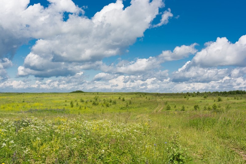 Wide-open spaces