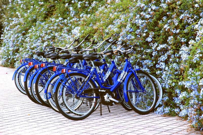 Locations vélos