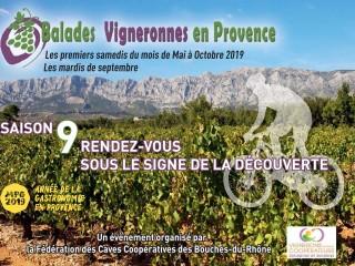 Balades Vigneronnes 2019