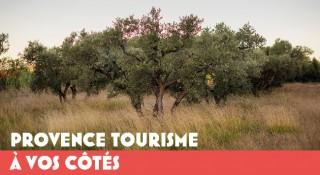 Provence Tourisme à vos côtés
