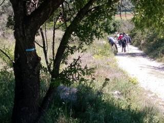 Sentiers des vignerons