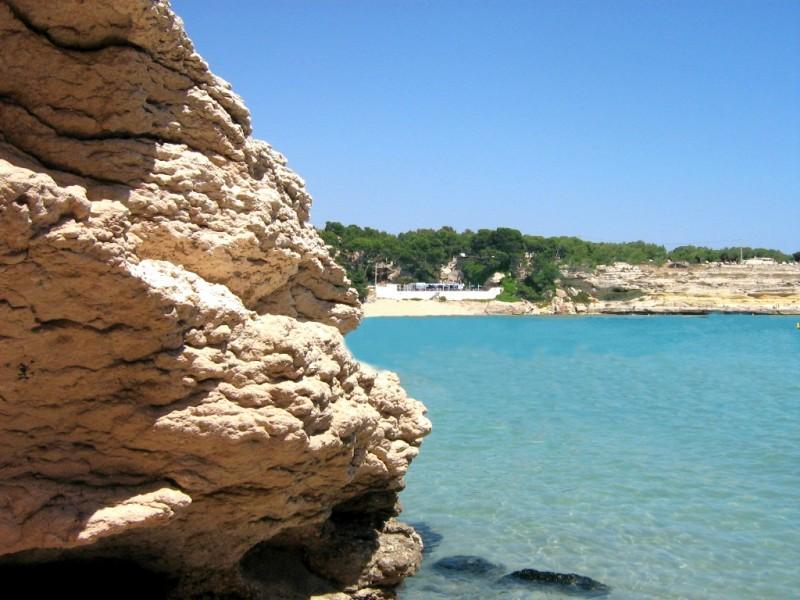 cote-bleue-s-tsakiropoulos-office-de-tourisme-de-martigues-cote-bleue-878