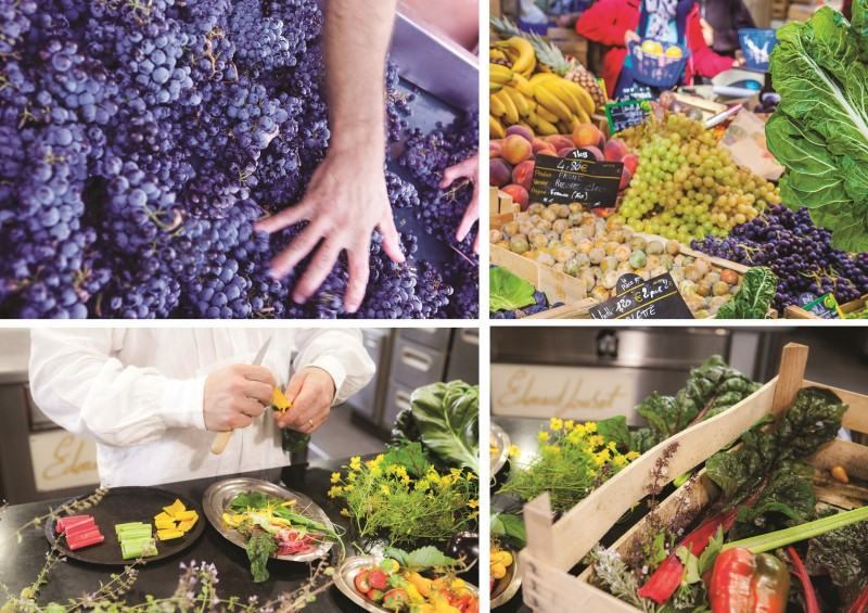 Marseille Provence Gastronomie 2020