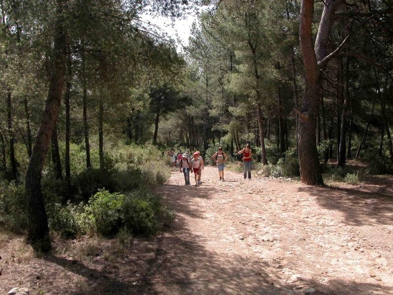 Sentier de randonnée au Grand Parc de Figuerolles