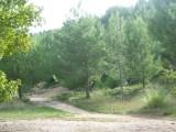 parc-de-figuerolles-e-pauleau-office-de-tourisme-de-martigues-nature-125431