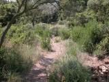 parc-de-figuerolles-spne-nature-2-125434