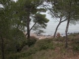 parc-de-figuerolles-spne-nature-6-125435