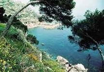The Blue Coast and the Estaque Hills