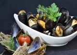 mussels-3148413-960-720-384941