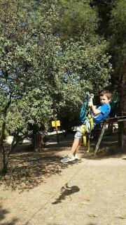 Tree climbing at the Grand Parc de Figuerolles