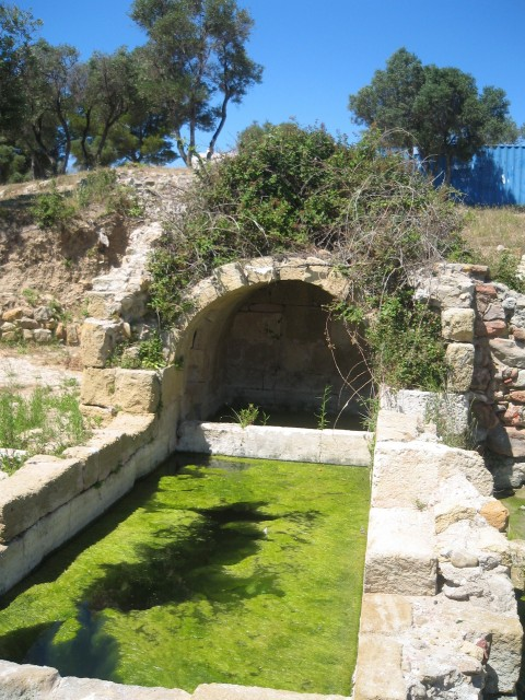 archeo-tholon-e-pauleau-office-de-tourisme-de-martigues-10-343150