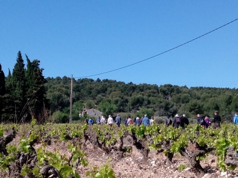 sentier-des-vignerons-page-9-434733